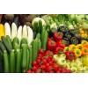 供应农产品